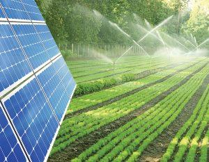 điện mặt trời cho nông nghiệp